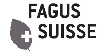 Fagus Suisse